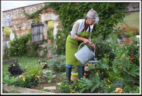 retirement social security benefit