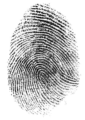 SSL-identity_112721938